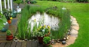 Как сделать пруд на приусадебном участке?